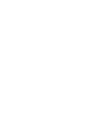 LVH Global
